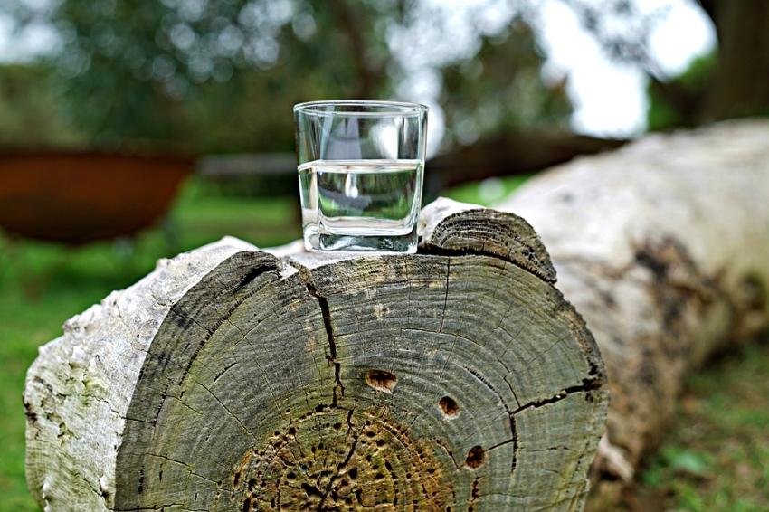 A csökkentett deutériumtartalmú víz daganatellenes hatású