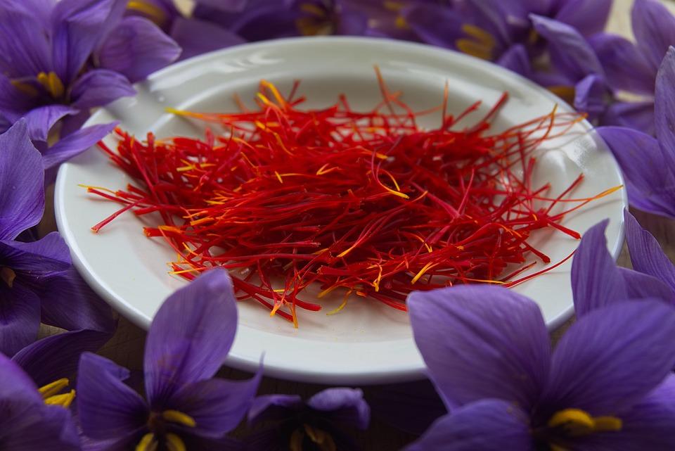 A sáfrány (Crocus sativus) tehát csak egy fajból származik,