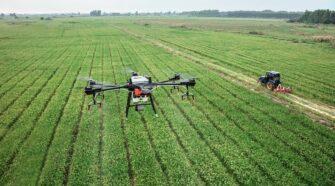 Drónok segíthetik a parlagfű kiszűrését és a járműforgalmat