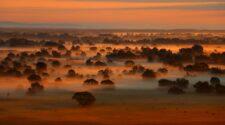 A Bodrog vidéke - Fotó: Zöld Kör