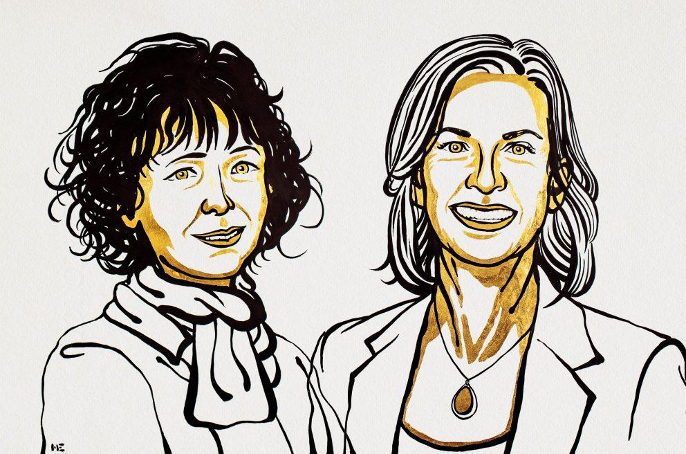 A Kémiai Nobel-díj díjazottjainak kihirdetésére október 7-én került sor.