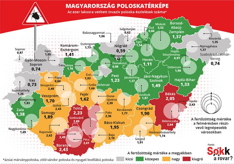 Magyarország poloskatérképe 2020. Forrás sokkarovar.blog.hu