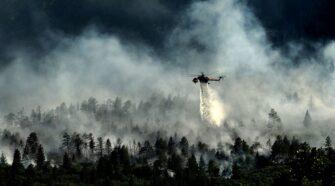 Miért veszélyesebb ránk nézve a szibériai erdőtűz az amazóniainál?