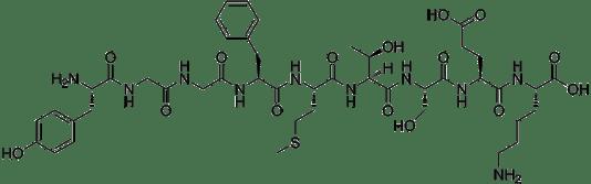 Az endorfin a test saját morfiuma.