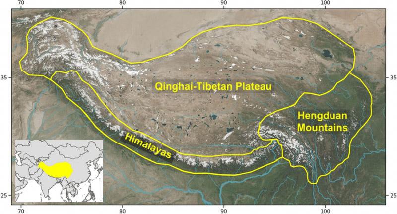 A Hengduan-hegység elhelyezkedése a Himalája hegyláncaiban. Forrás: researchgate.com