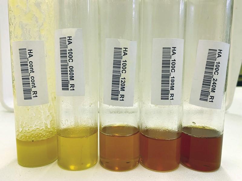 A méz hasznos tulajdonságai a prosztatitisekkel)