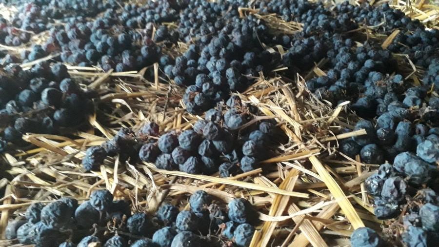 A leginkább déli országokban elterjedt szalmabor töppesztett gyümölcsből készül.