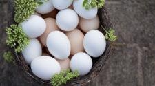Krémszínű tojás: új magyar kuriózum