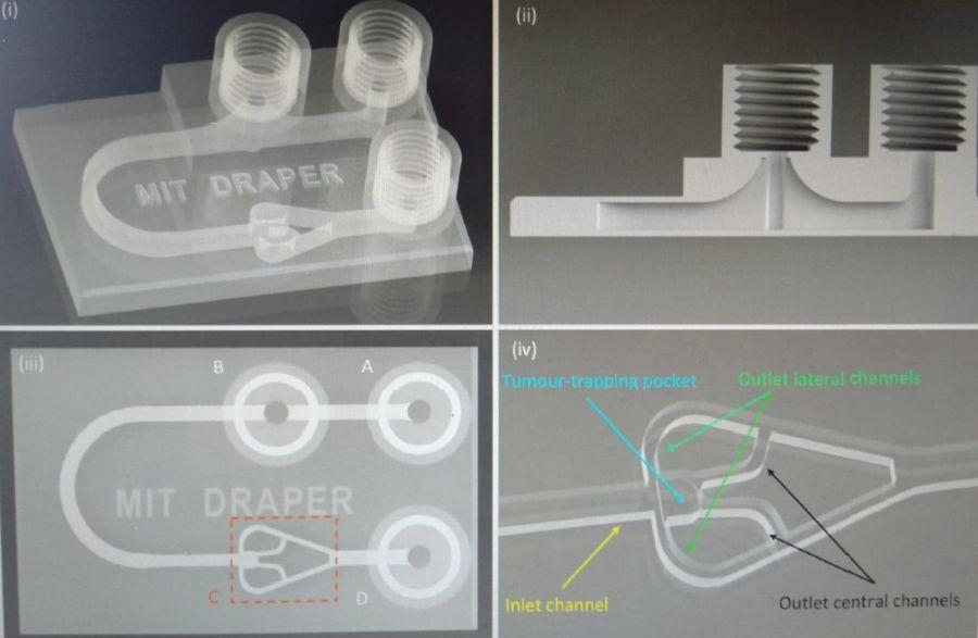 MIT Draper, a 3D-nyomtatási forma, amiben a sejtek célirányosan növekednek. Az eszköz akkurátusan táplálja alulról a szervezetet tápanyaggal, illetve szén-dioxiddal. Forrás: MIT