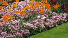 Fogadj örökbe egy budapesti virágágyást!